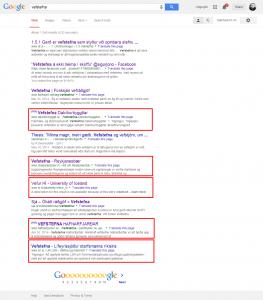vefstefna_google_2